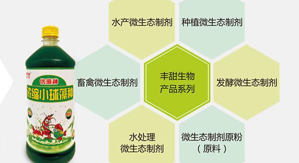 水产芽孢杆菌,芽孢杆菌价格,芽孢杆菌作用