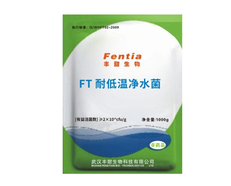 FT耐低温净水菌