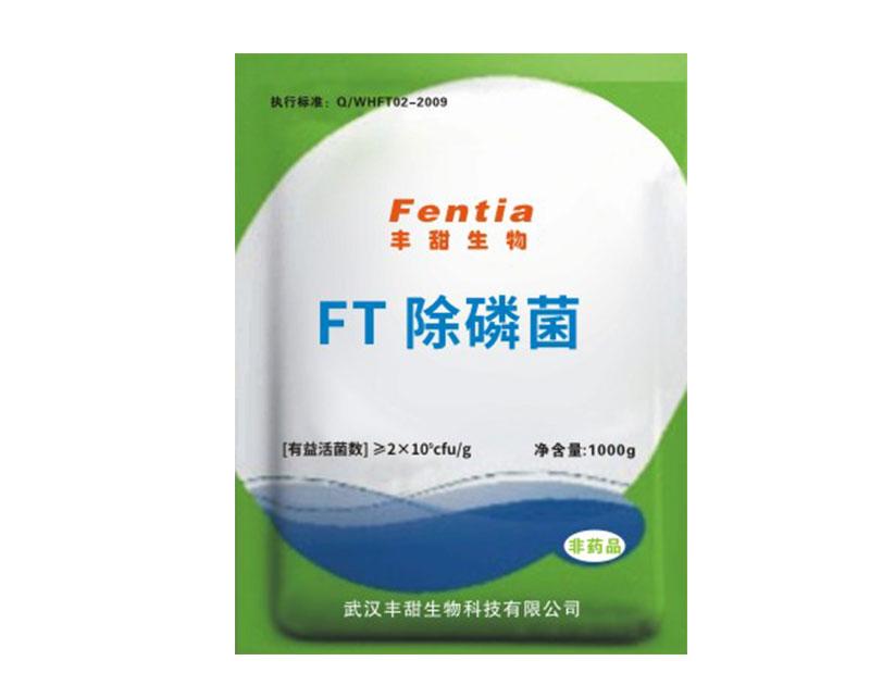 FT除磷菌