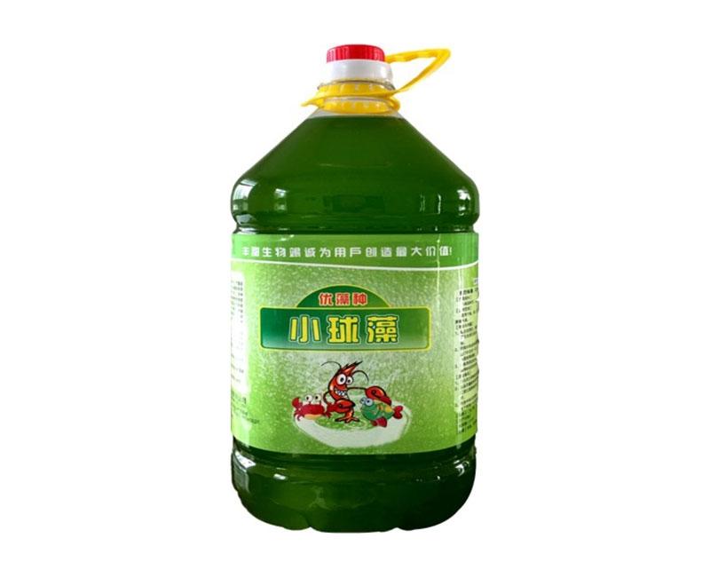 水处理小球藻